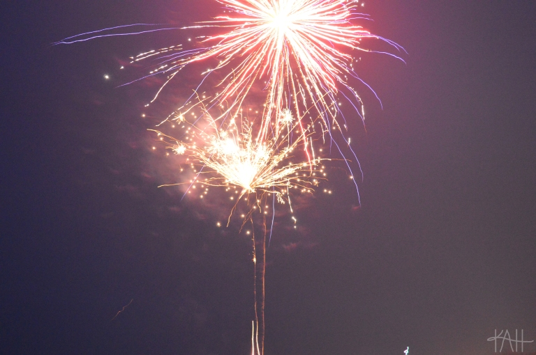 The key to awesome firework pictures: slow shudder speed. Exhibit A.