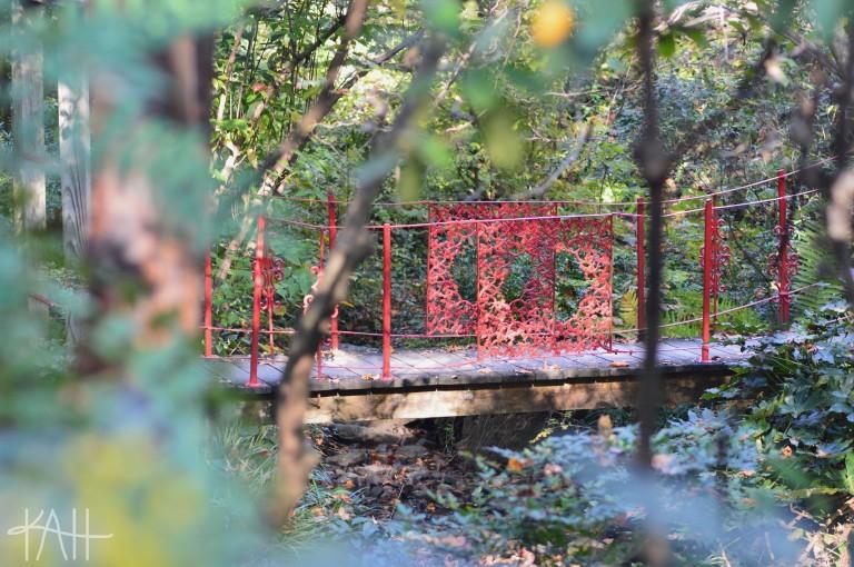 I think so. Botanical Gardens, UNCC (Oct. 17th)