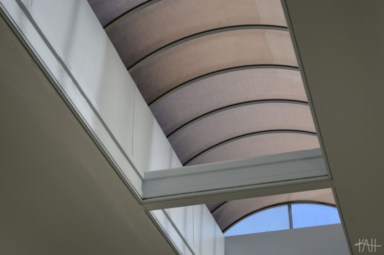 the equally-as-pretty roof of the Telfair Museum that lets in natural sunlight. (Oct. 15th)